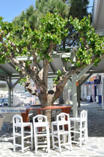 Haven Gavrio | Eiland Andros | De Griekse Gids | Foto 29 - Foto van De Griekse Gids
