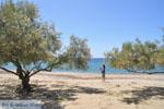 Strand Fellos bij Gavrio | Eiland Andros | De Griekse Gids | Foto 1 - Foto van De Griekse Gids