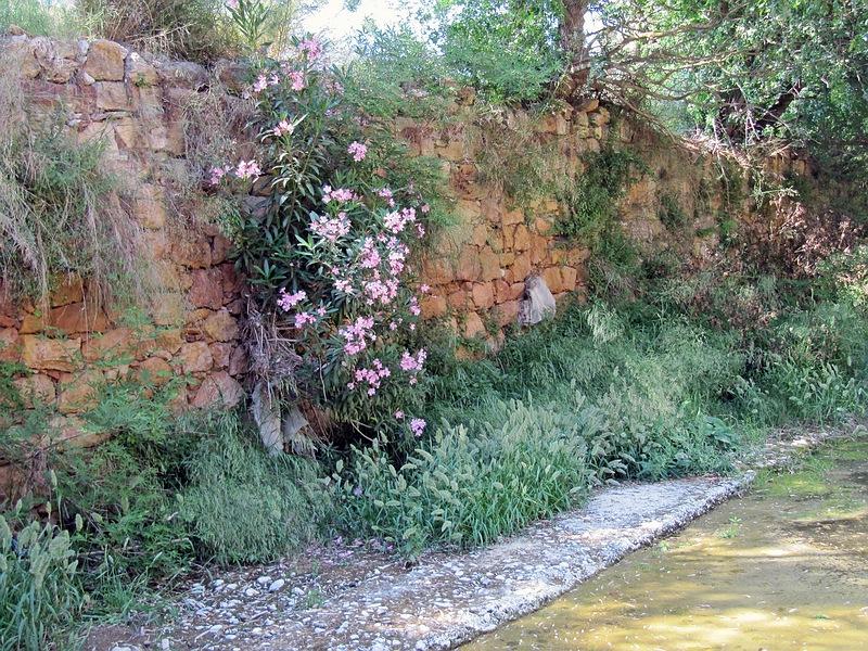 foto Kambos bebloemde muur | Chios - De Griekse Gids