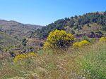 Natuur Chios | Chios - De Griekse Gids - Foto van Doortje van Lieshout
