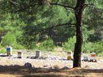 Bijenkorven Noord-Chios | De Griekse Gids - Foto van Doortje van Lieshout