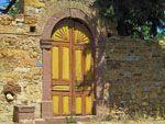Citroenen Kambos | Chios - De Griekse Gids - Foto van Doortje van Lieshout