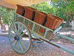 Citrus Museum Kambos |Chios - De Griekse Gids foto 4 - Foto van Doortje van Lieshout