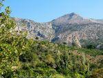 Fyta  | Noord-Chios | De Griekse Gids foto 3 - Foto van Doortje van Lieshout