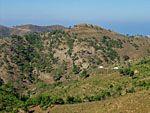 Kambia | Noord-Chios | De Griekse Gids foto 8 - Foto van Doortje van Lieshout