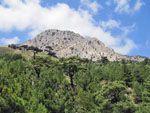 Spartounda | Noord-Chios - De Griekse Gids foto 1 - Foto van Doortje van Lieshout