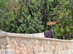 Panoramafoto Chios stad foto 2 - Eiland Chios - Foto van De Griekse Gids