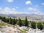 Bossen op de rotsen van noord Chios - Eiland Chios - Foto van De Griekse Gids