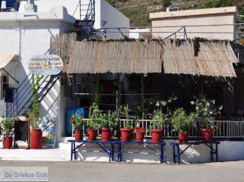 Bloempotten bij visrestaurant Emborios - Eiland Chios - Foto van De Griekse Gids
