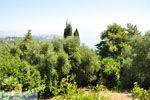 Achillion | Gastouri Corfu | De Griekse Gids - foto 36 - Foto van De Griekse Gids