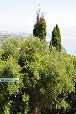 Achillion | Gastouri Corfu | De Griekse Gids - foto 37 - Foto van De Griekse Gids