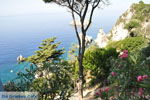 Paleokastritsa (Palaiokastritsa) | Corfu | De Griekse Gids - foto 20 - Foto van De Griekse Gids