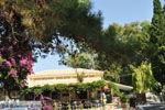 Paleokastritsa (Palaiokastritsa) | Corfu | De Griekse Gids - foto 26 - Foto van De Griekse Gids