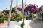 Afionas (bij kaap Arilas) | Corfu | De Griekse Gids - foto 3 - Foto van De Griekse Gids