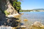 JustGreece.com Dasia (Dassia) | Corfu | De Griekse Gids - foto 4 - Foto van De Griekse Gids