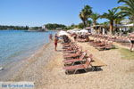Dasia (Dassia) | Corfu | De Griekse Gids - foto 5 - Foto van De Griekse Gids