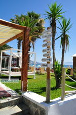 Dasia (Dassia) | Corfu | De Griekse Gids - foto 10 - Foto van De Griekse Gids