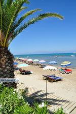 Roda | Corfu | De Griekse Gids - foto 9 - Foto van De Griekse Gids