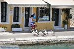 Gaios | Eiland Paxos (Paxi) bij Corfu | De Griekse Gids | Foto 019 - Foto van De Griekse Gids