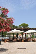 Gaios | Eiland Paxos (Paxi) bij Corfu | De Griekse Gids | Foto 030 - Foto van De Griekse Gids