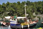 Gaios | Eiland Paxos (Paxi) bij Corfu | De Griekse Gids | Foto 094 - Foto van De Griekse Gids