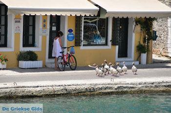 Gaios | Eiland Paxos (Paxi) bij Corfu | De Griekse Gids | Foto 018 - Foto van De Griekse Gids