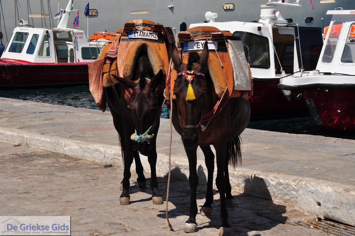 foto Eiland Hydra Griekenland - De Griekse Gids Foto 32