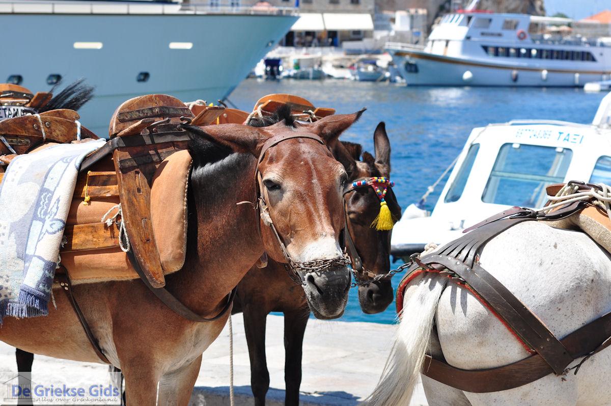 foto Eiland Hydra Griekenland - De Griekse Gids Foto 75