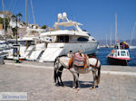 Eiland Hydra Griekenland - De Griekse Gids Foto 35 - Foto van De Griekse Gids