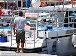 Eiland Hydra Griekenland - De Griekse Gids Foto 78 - Foto van De Griekse Gids