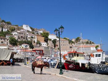 Eiland Hydra Griekenland - De Griekse Gids Foto 37 - Foto van De Griekse Gids