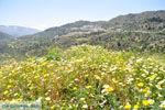 Othos | Eiland Karpathos | De Griekse Gids foto 001 - Foto van De Griekse Gids