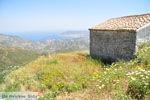 Othos | Eiland Karpathos | De Griekse Gids foto 004 - Foto van De Griekse Gids