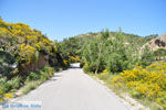 Natuur Karpathos bij Achata Beach | De Griekse Gids | Eiland Karpathos - Foto van De Griekse Gids