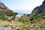 Achata Beach | Eiland Karpathos | De Griekse Gids foto 001 - Foto van De Griekse Gids