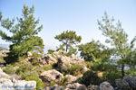 Natuur in het oosten van Karpathos | De Griekse Gids 003