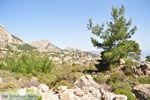 Natuur in het oosten van Karpathos | De Griekse Gids 004 - Foto van De Griekse Gids