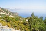 Natuur in het oosten van Karpathos | De Griekse Gids 006 - Foto van De Griekse Gids