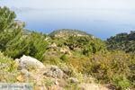 Natuur in het oosten van Karpathos | De Griekse Gids 008 - Foto van De Griekse Gids