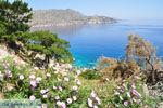 Apela Beach (Apella) | Eiland Karpathos | De Griekse Gids foto 009 - Foto van De Griekse Gids