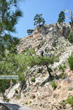 Natuur in het oosten van Karpathos | De Griekse Gids foto 009