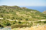 Centraal Karpathos tussen Spoa en Mesochori | De Griekse Gids foto 001 - Foto van De Griekse Gids