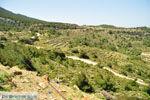Centraal Karpathos tussen Spoa en Mesochori | De Griekse Gids foto 002 - Foto van De Griekse Gids
