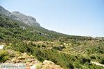 Centraal Karpathos tussen Spoa en Mesochori | De Griekse Gids foto 003 - Foto van De Griekse Gids