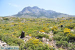 Centraal Karpathos tussen Spoa en Mesochori | De Griekse Gids foto 004 - Foto van De Griekse Gids