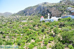 Mesochori | Eiland Karpathos | De Griekse Gids foto 021 - Foto van De Griekse Gids