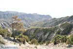 Natuur onderweg naar Olympos | Eiland Karpathos foto 003 - Foto van De Griekse Gids