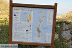 Avlonas bij Olympos | Karpathos | De Griekse Gids foto 18 - Foto van De Griekse Gids