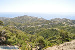 Natuur in het oosten van Karpathos | De Griekse Gids 13 - Foto van De Griekse Gids