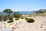 Diakofti beach | Stranden Karpathos | De Griekse Gids foto 002 - Foto van De Griekse Gids